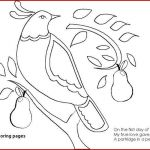 Color Book Spiderman Awesome Happy Spider Coloring Page Beautiful Color Pages Spiderman Coloring