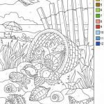 Color by Number Sheets for Adults Wonderful Sea Shells Color original Style or by Numbers