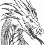 Color Pages Dragon Inspirational Real Dragon Coloring Pages