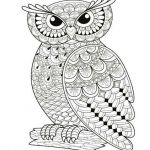 Color Pages for Adults Free Pretty Owl Coloring Pages for Adults New Free Owl Coloring Pages Coloring