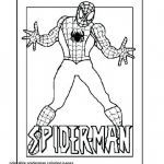 Color Pages Printable Brilliant Sunflower Coloring Page Inspirational Spoderman Template Luxury