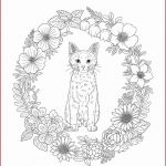 Color Sheet for Adults Wonderful Coloring Pages Adult Adult Coloring Book Pages Fresh Color