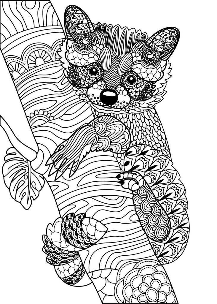Coloring Animals for Adults Awesome Wild Animals to Color