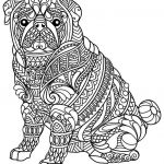 Coloring Animals for Adults Pretty Animal Coloring Pages Pdf Coloring Animals