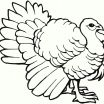 Coloring Book Info Fresh Beautiful Tweety Pie Coloring Pages Nocn