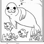 Coloring Book Sea Animals Brilliant Awesome Sea Life Coloring Page 2019