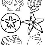 Coloring Book Sea Animals Brilliant Free Printable Seashell Coloring Pages for Kids Crafts