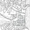 Coloring Page for Adults Inspirational Tropical Birds Coloring Pages Elegant Adult Coloring Pages Birds