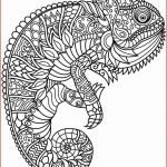 Coloring Pages for Adults Printable Free Elegant Coloring Books Halloween Coloring Pages Printable Unique Adult