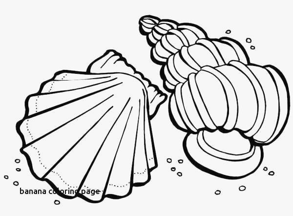 Fresh Starry Night Coloring Pages Nocn