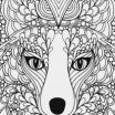 Coloring Pages Of Animals for Adults Awesome Coloring Sheets Animals Pics Animal Coloring Books for Adults