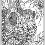 Coloring Pages Of Animals for Adults Inspirational Easy Coloring Pages for Adults Best Adult to Print Awesome Cool