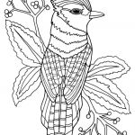 Coloring Pages Of Birds and Flowers Creative Coloring Lmj Coloring Page Bluejay Animal Pages for Adults to Print