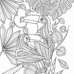 Coloring Pages Of Birds and Flowers Inspirational Beautiful Bird Paradise Bird Coloring Pages – Nicho