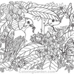 Coloring Pages Of Birds and Flowers Inspirational Free Adult Coloring Pages