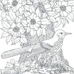 Coloring Pages Of Birds and Flowers Pretty Rug Coloring Page – 488websitedesign
