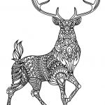 Coloring Pages Pdf Pretty Coloring Pages Pdf Best Advanced Peacock Coloring Pages New