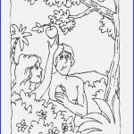 Coloring Pages People Creative Adam and Eve Coloring Page