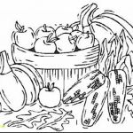 Coloring Pages Pokemon Exclusive Lovely Pokemon Cat Coloring Pages