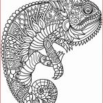 Coloring Pages to Print for Adults Creative Coloring Books Halloween Coloring Pages Printable Unique Adult