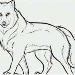 Coloring Pages Wolf Brilliant How Do You Draw A Wolf Best Free Husky Coloring Pages Unique