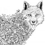 Coloring Pages Wolf Elegant Wolf Coloring Page