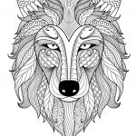 Coloring Pages Wolf Exclusive X Ray Coloring Page