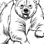 Coloring Teddy Bear Wonderful Free Coloring Pages Panda Bear Fresh Masha and the Bear Russian