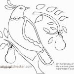Crayola Coloring Book Awesome Girls Coloring Books New Woody Coloring Pages Coloring Pages