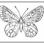 Crayola Coloring Pages Inspiring butter Coloring butterfly Coloring Pages Unique Crayola Pages 0d