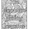 Cursing Adult Coloring Books Awesome 453 Best Vulgar Coloring Pages Images In 2017