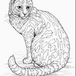 Cute Cat Coloring Pages Amazing Cute Cat to Print Lovely Coloring Pages Real Kittens