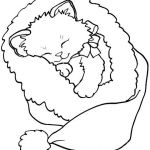 Cute Cat Coloring Pages Inspired Gato Natal Crafts