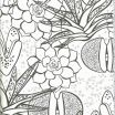 Cute Coloring Books Brilliant Fall Coloring Sheets