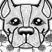 Cute Puppy Coloring Pictures Best Of Drawing Dog Dog Wallpaper Drawing Beautiful Amazing Cute