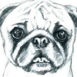 Cute Puppy Pictures to Print Awesome Free Printable Pug Coloring Pages Fresh Pugs Coloring Pages Pug
