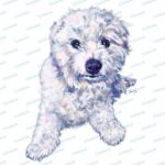 Cute Puppy Pictures to Print Best Of Pin by Waggy Street On Waggystreet Dog Art Cat Art Animal Art Pet