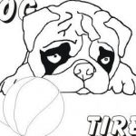 Cute Puppy Pictures to Print Inspirational Free Printable Pug Coloring Pages Fresh Pugs Coloring Pages Pug