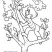 Daniel Tiger Printables Awesome Awesome Fruit Bowl Colouring Pages Free – Kursknews