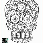 Day Of the Dead Skull Coloring Sheets Inspirational Sugar Skull Coloring Pages Cool Coloring Page Unique Witch
