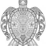 Detailed Coloring Pages for Adults Fresh Sea Turtle Printable Coloring Pages at Getdrawings