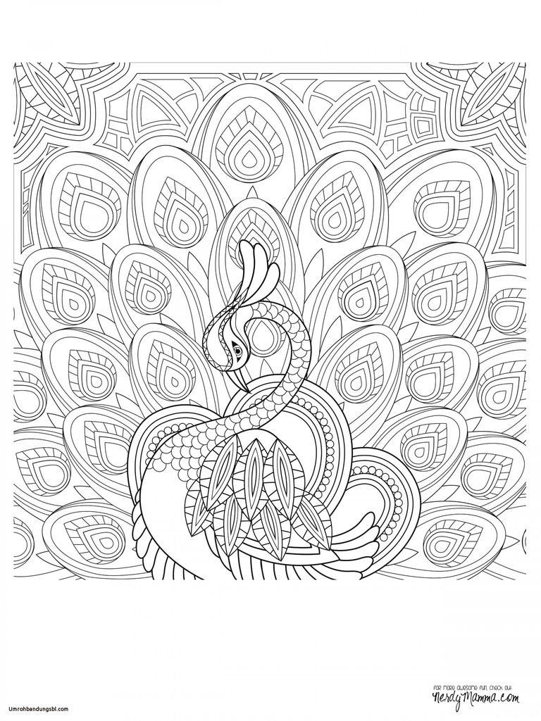 Difficult Coloring Pictures Exclusive Nature Coloring