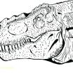 Dinosaur Coloring Book Pdf Best Of Free Coloring Pages for Kids Pdf – Alpin Budfo