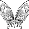 Dinosaur Coloring Book Pdf Fresh butterfly Coloring Book Weather Printable Colouring Free