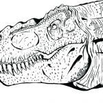 Dinosaur Coloring Pages to Print Best Dinosaur Coloring Pages