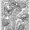 Dragon Adult Coloring Books Excellent Coloring Dragon Coloring Pages forults to Print Free Downloadable
