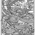Dragon Coloring Books for Adults Inspired Dragon Coloring Pages for Adults Best Coloring Pages for Kids