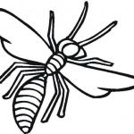 Dragonfly Coloring Book Inspiration Insect Coloring Pages Fabulous Insects In the Garden Coloring Pages