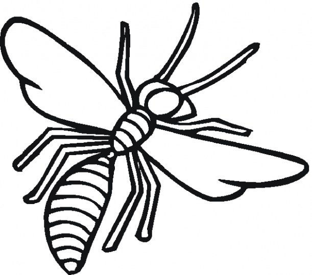 Dragonfly Coloring Book Inspiration Insect Coloring Pages ...