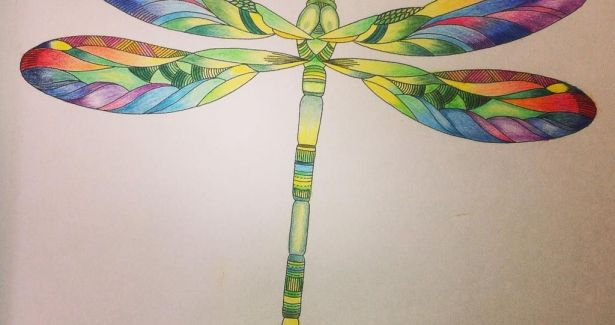 Dragonfly Coloring Book Inspirational Coloured Pencil Watercolour Dragonfly